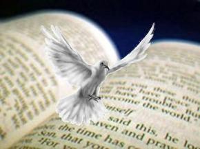 Dove_Spirit